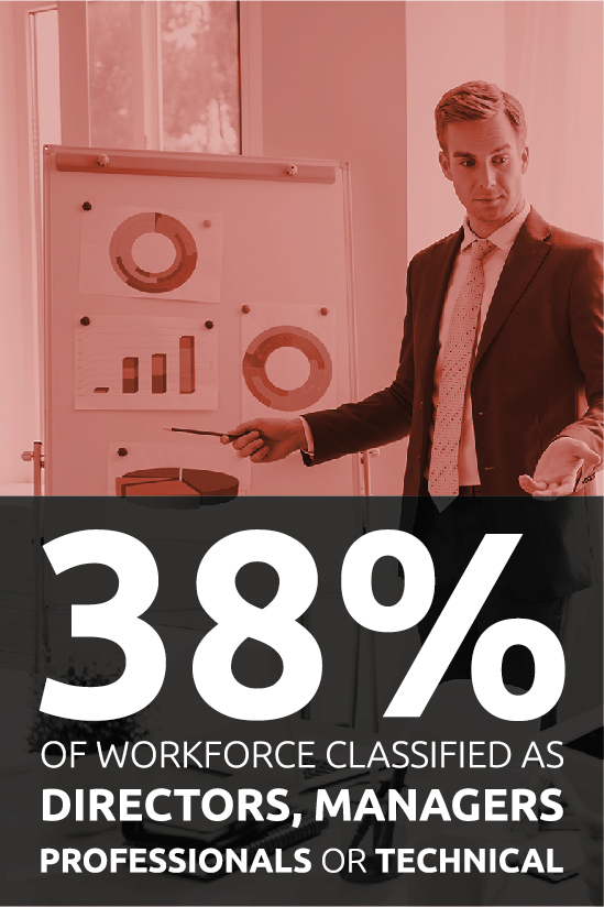 Percentage professionals